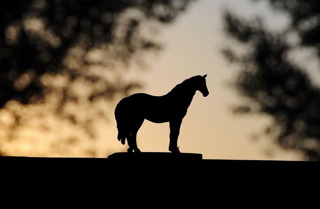 Toy, Horse, Sunset, Barn
