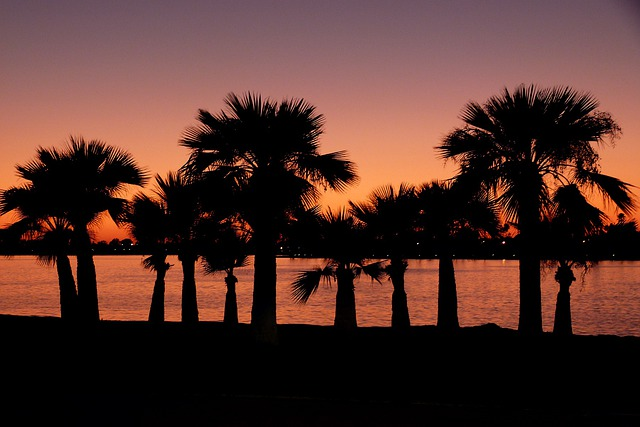 Sunset, San Diego, California, Weather, Palms, Coast