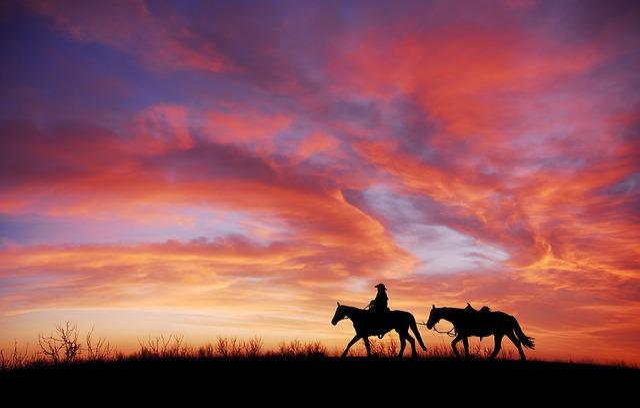 Sunset, Silhouette, Cowboy, Horse, Dusk, Freedom