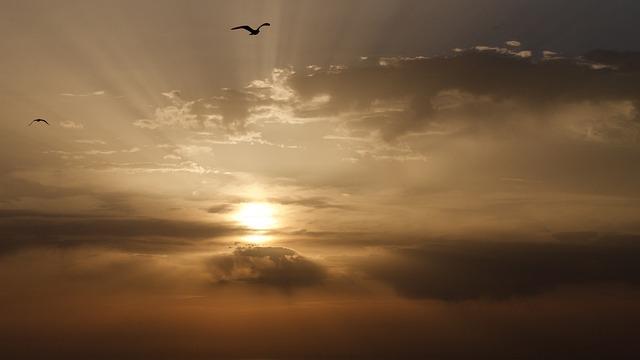 Sunset, Sun, Dawn, Sky, Dusk
