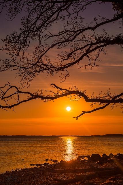Sunset, Dusk, Dawn, Tree, Evening, Silhouette, Nature