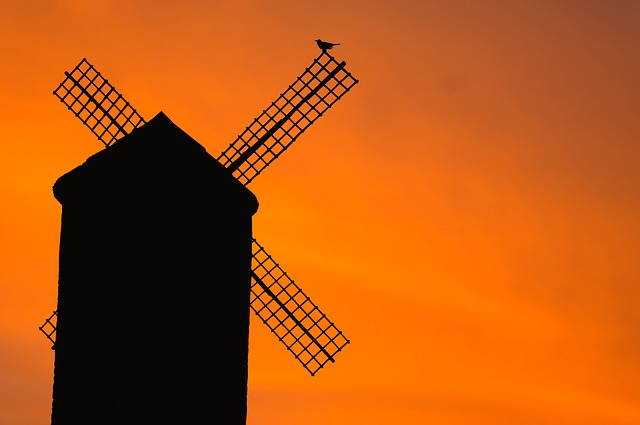 Windmill, Old, Bird, Silhouette, Sunset, Evening