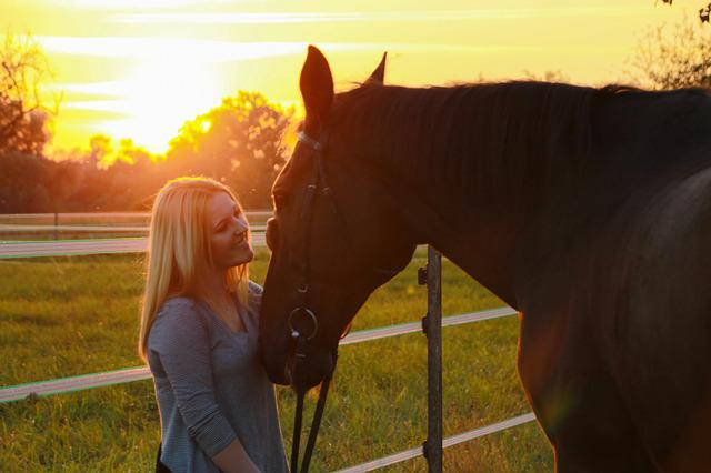 Horse, Sunset, Evening, Dusk, Sunlight, Human