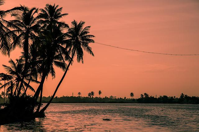 Sunset, Kerala, Aleppay, Boat, Fisherman, Fishing