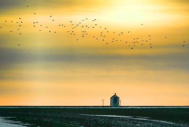Sunset, Flock Of Birds, Sky, Chapel