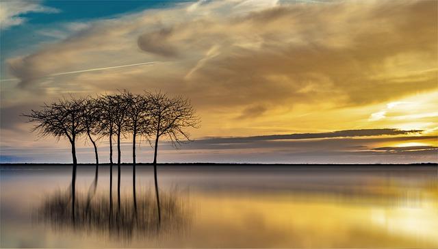Sunset, Dawn, Nature, Waters, Dusk, Sky, Sun, Landscape