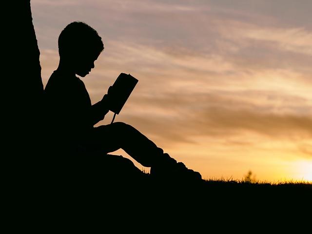 People, Man, Kid, Boy, Child, Read, Book, Sunset