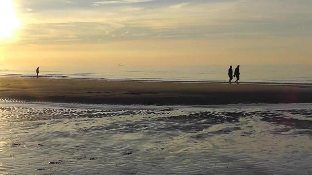 Evening Walk, Walk, Sea, Sunset, Beach, Rest, Ocean