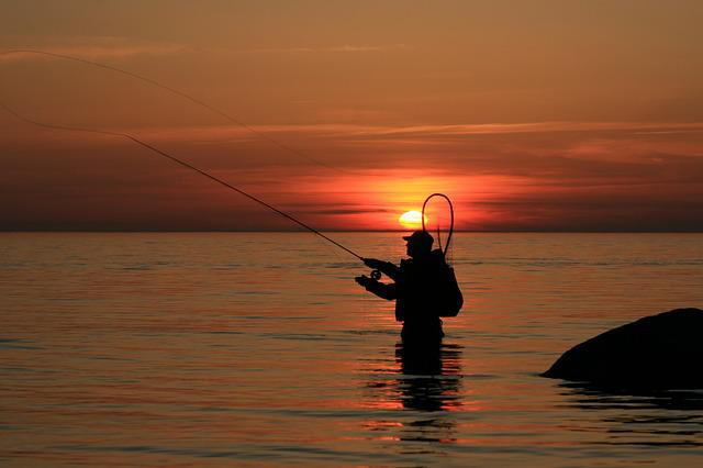 Angler, Time Out, Sunset, Fishing Rod, Sea, Catch Fish