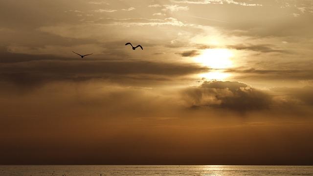 Sunset, Sun, Dawn, Nature, Sky