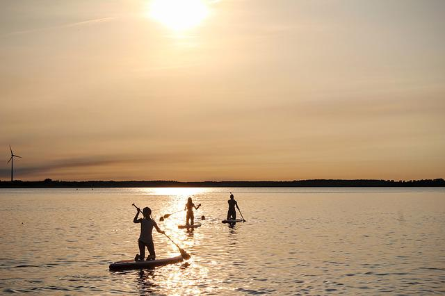 Stand Up Paddle, Sunset, Water, Paddle