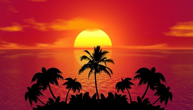 Sunset, Palm Trees, Silhouettes, Tropical Island