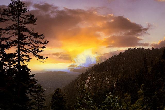 Mountain, Pine Tree, Twilight, Sunset