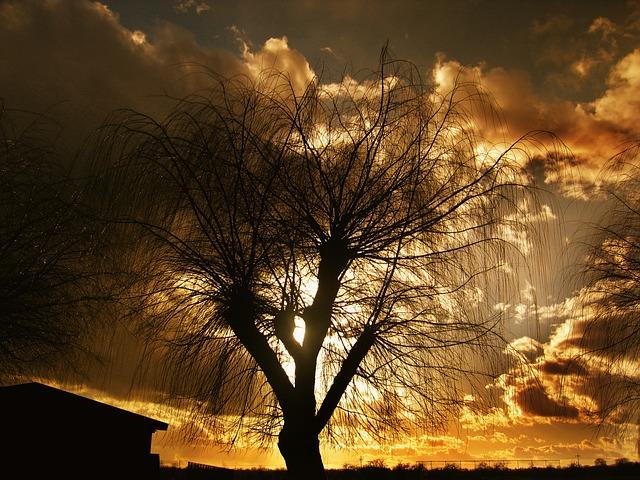 Sun, Lake, Setting, Sunset, Water, Mirroring