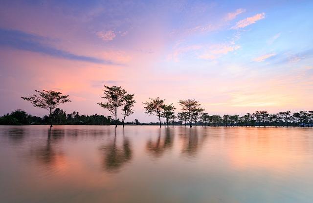 Water, Sunset, Nature, Reflection, Fields, Viet Nam