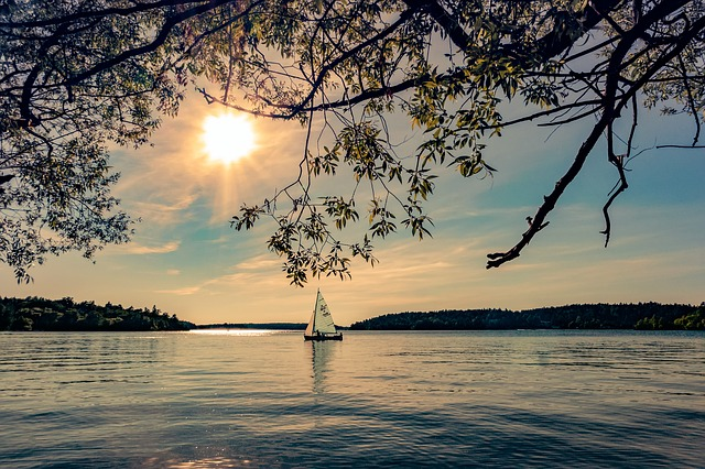 Summer, Water, Archipelago, Sunshine, Sun, Tree, Boat