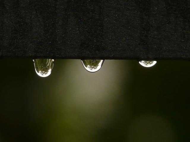 Drip, Raindrop, Water, Wet, Surface Tension, Rain