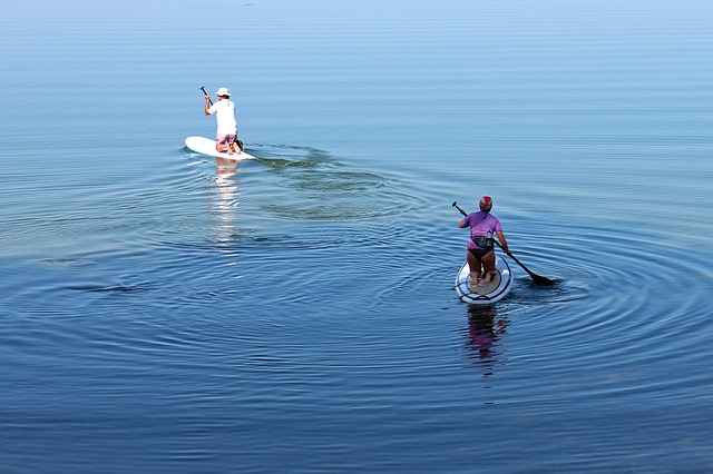 Leisure, Water Sports, Paddle, Surfboard