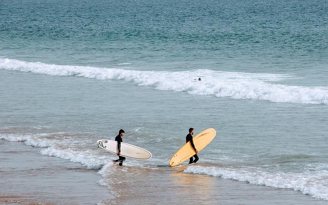 Beach, Sea, Water, Coast, Surfer, Surf, Surfboard