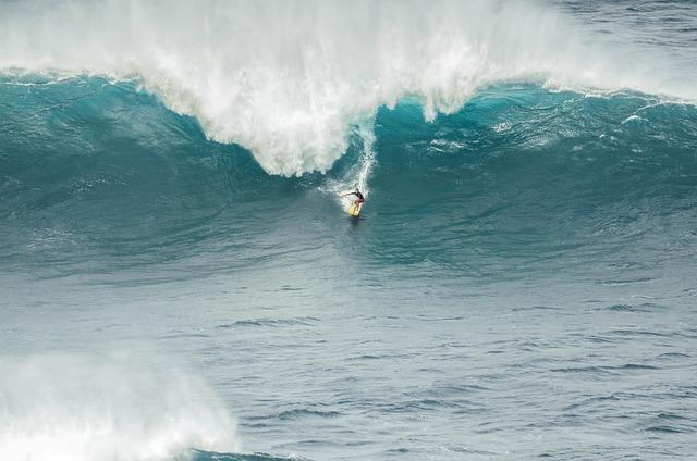 Surfer, Jaws, Surfboard, Sport, Activity, Sea, Surf