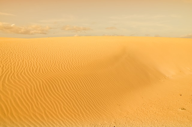 Desert, Dune, Sand, Nature, Heat, Sandy, Survival