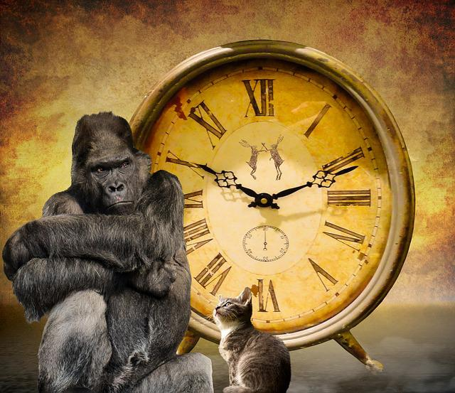 Time, Symbol, Clock, Pointer, Wait, Sustainability