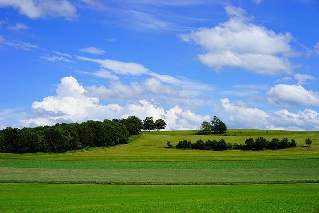 Fields, Reported, Swabian Alb, Rand Ecker Maar
