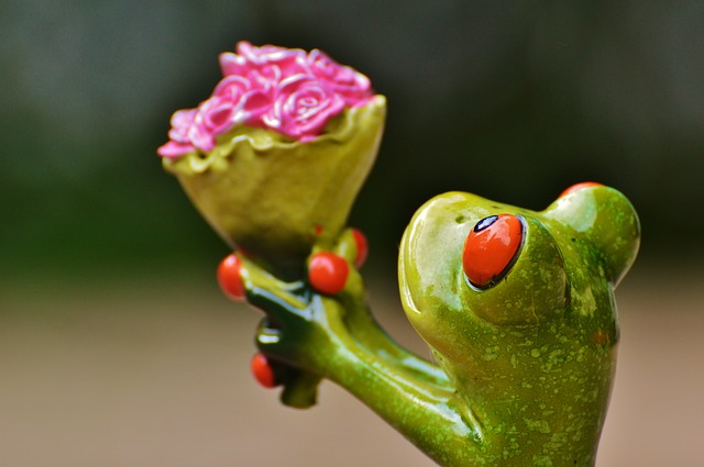 I Beg Your Pardon, Excuse Me, Frog, Sweet, Cute, Funny