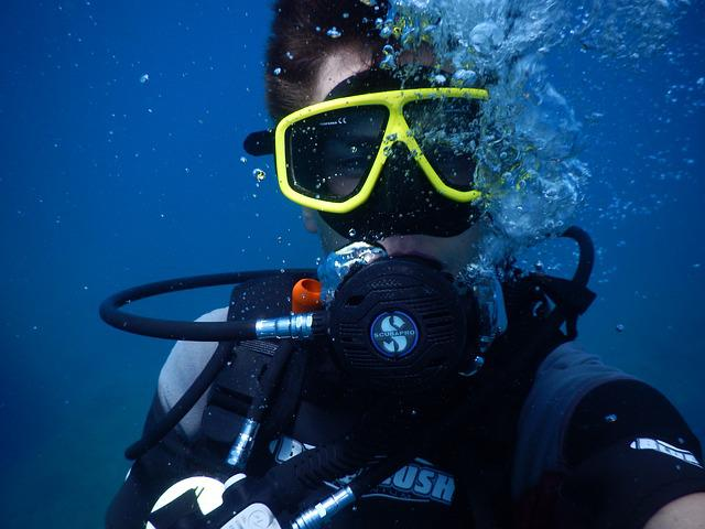 Diving, Divers, Underwater, Swim
