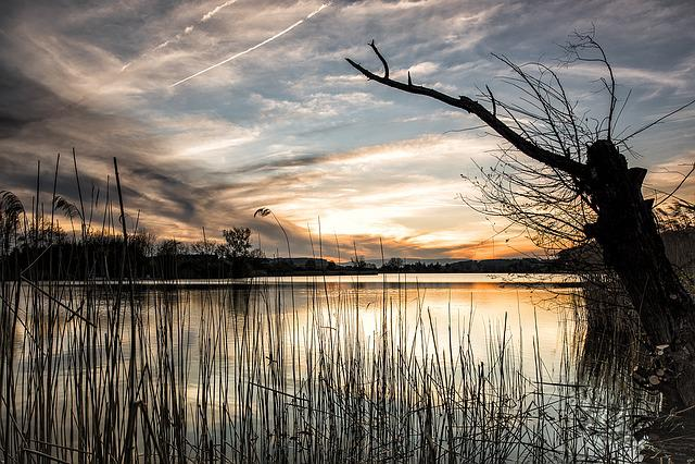 Lake, Landscape, Switzerland, Nature, Water, Sunset
