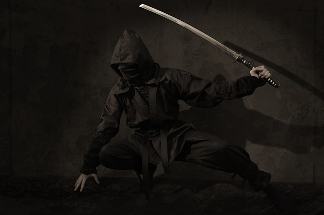 Ninja, Warrior, Japan, Assassin, Sword, Mask, Shadow