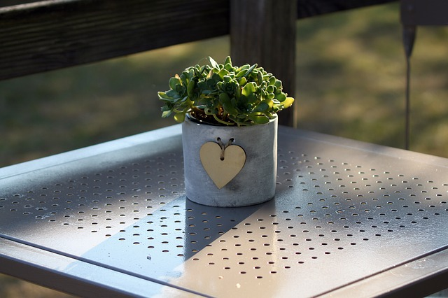 Potted Plant, Heart, Succulent, Table, Green, Symbol