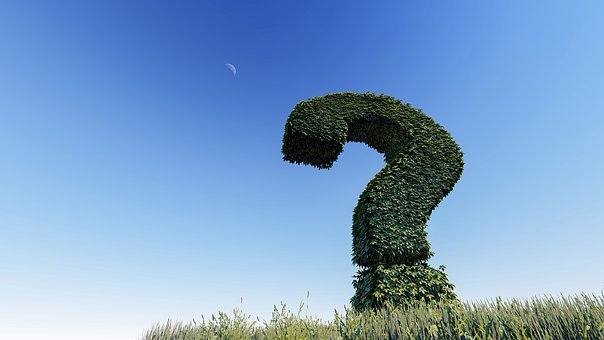 Question Mark, Knowledge, Question, Sign, Symbol, Mark