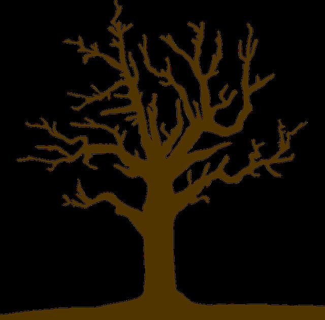 Tree, Logo, Nature, Design, Symbol, Icon, Silhouette
