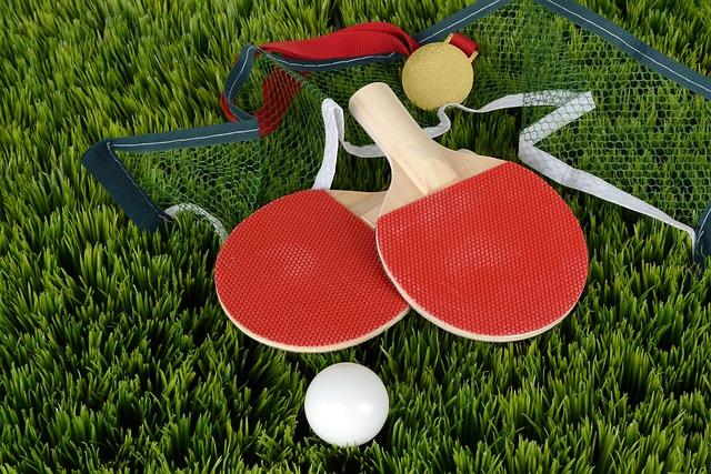 Table Tennis, Ping-pong, Bat, Table Tennis Bat, Sport