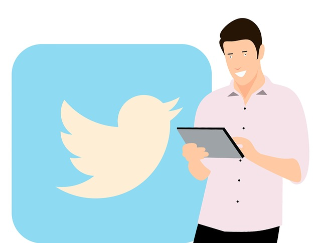 Twitter, Social Media, Application, Like, Tablet, Young