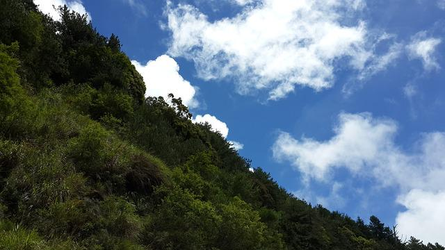 Taiwan Alishan, Mountain, A Surname, Nature Scenery