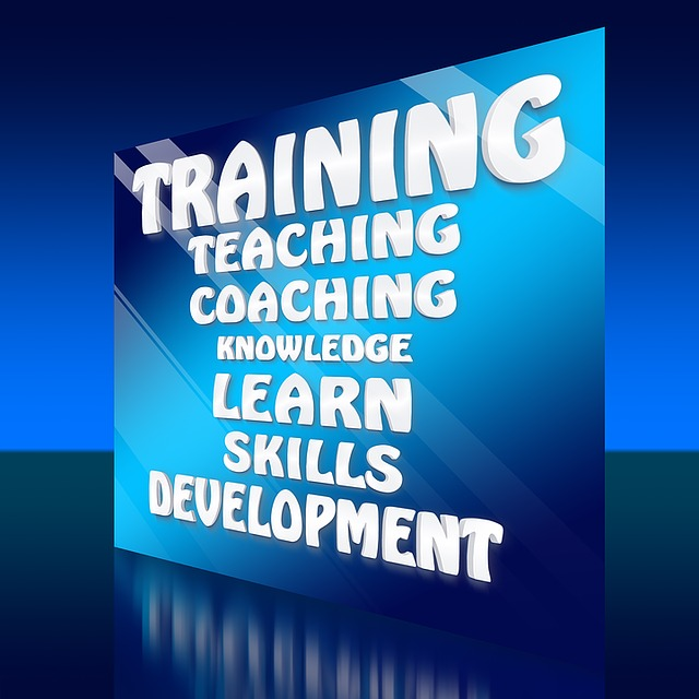 Skills, Can, Talents, Training, Teaching, Concept