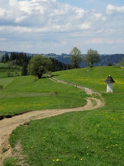 Poland, Tatra Bukovina, Mountains, Tourism, Landscape