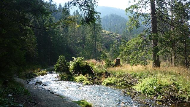 Tatry, Poland, Mountains, Landscape, Nature