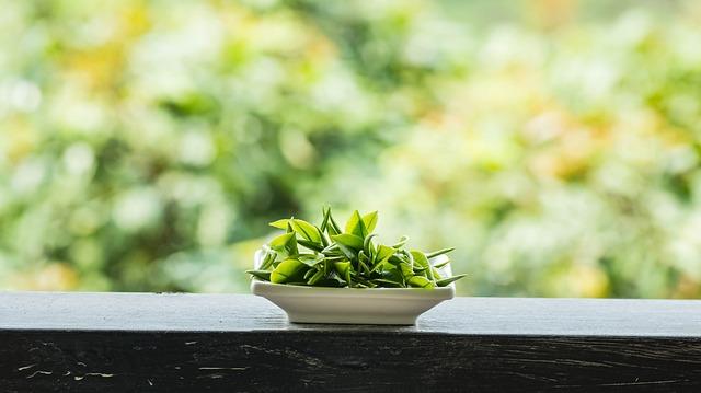 Spring, Alpine, Tea Garden
