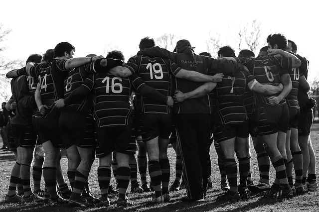 Team, Huddle, Togetherness, Connection, Teamwork