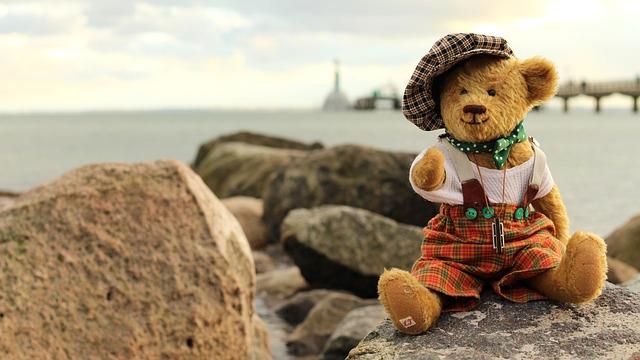 Teddy, Teddy Bear, Soft Toy, Stuffed Animal, Bears
