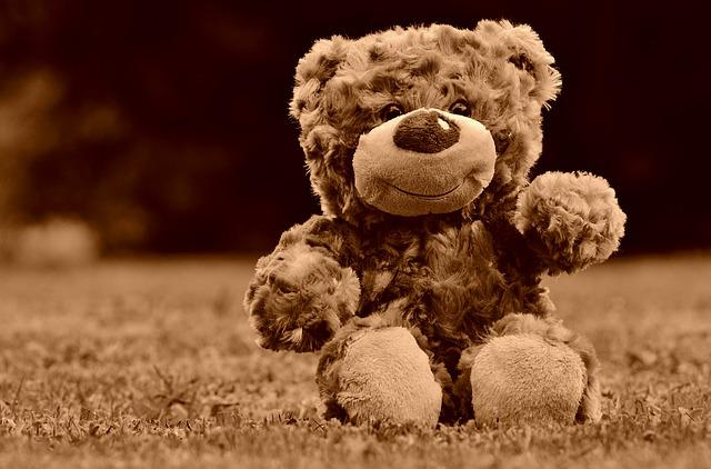Teddy, Soft Toy, Stuffed Animal, Teddy Bear, Cute