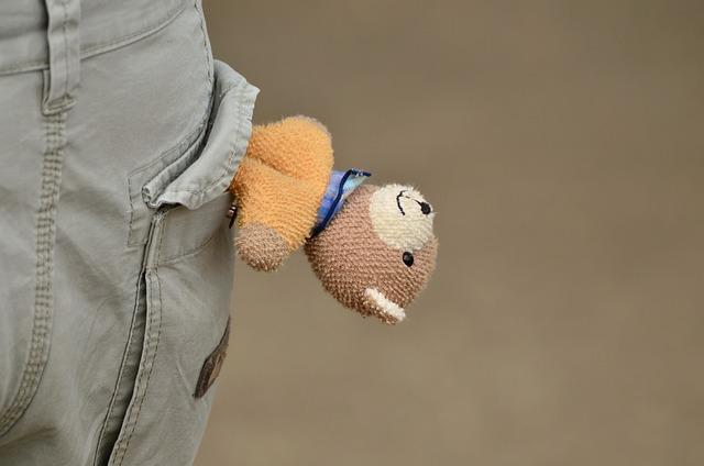 Pocket, Pants, Funny, Hoax, Teddy Bear, Toys, Jeans