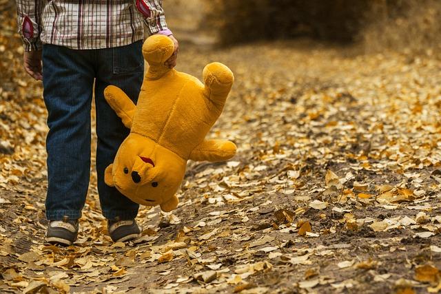 Child, Teddy Bear, Autumn, Teddy, Walk, Outdoors