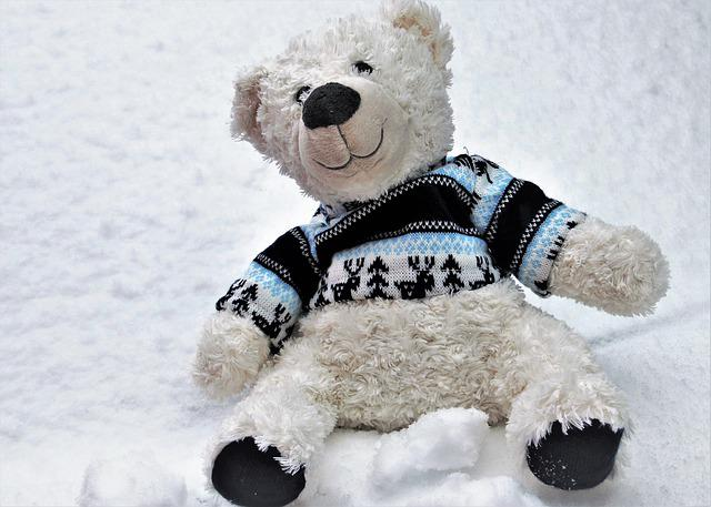Plush, Winter, First Snow, Winter Dream, Teddy Bear
