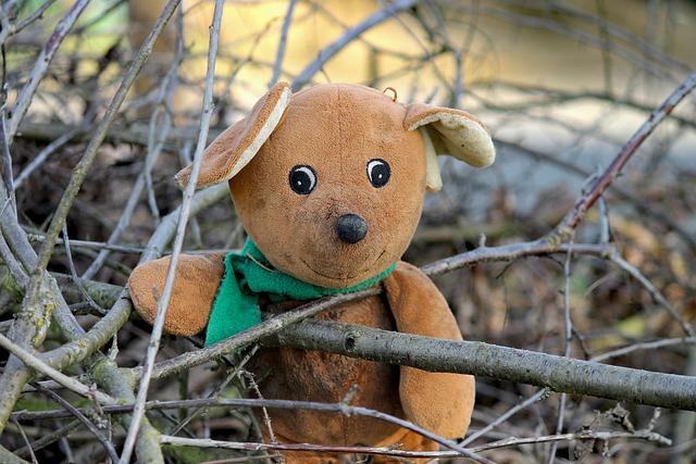 Bear, Teddy Bear, Teddy, Brown, Bears, Favorite Animal