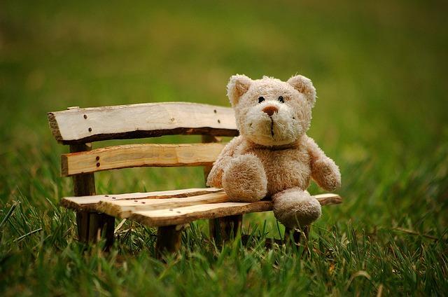 Teddy, Soft Toy, Funny, Teddy Bear, Bears, Cute