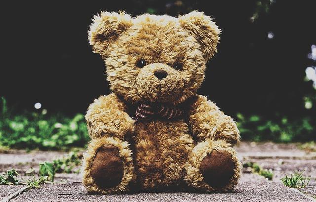 Teddy Bear, Stuffed Animal, Teddy, Furry Teddy Bear